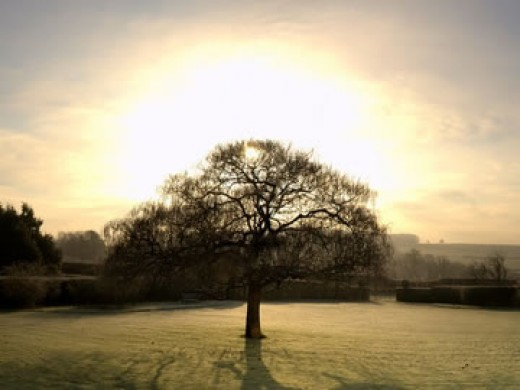 Today, it's the shortest day in the year, here, in the Southern